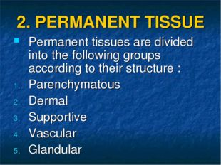 2. PERMANENT TISSUE Permanent tissues are divided into the following groups a