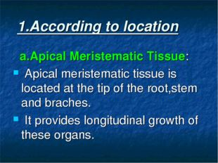 1.According to location a.Apical Meristematic Tissue: Apical meristematic ti