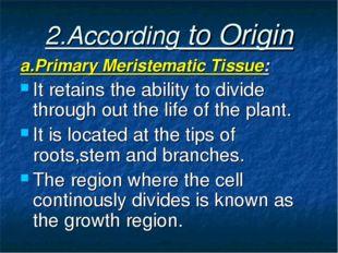 2.According to Origin a.Primary Meristematic Tissue: It retains the ability t