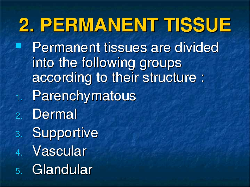 2. PERMANENT TISSUE Permanent tissues are divided into the following groups a...