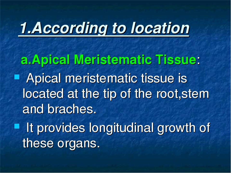 1.According to location a.Apical Meristematic Tissue: Apical meristematic ti...