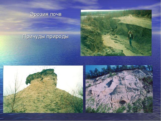 Причуды природы Эрозия почв