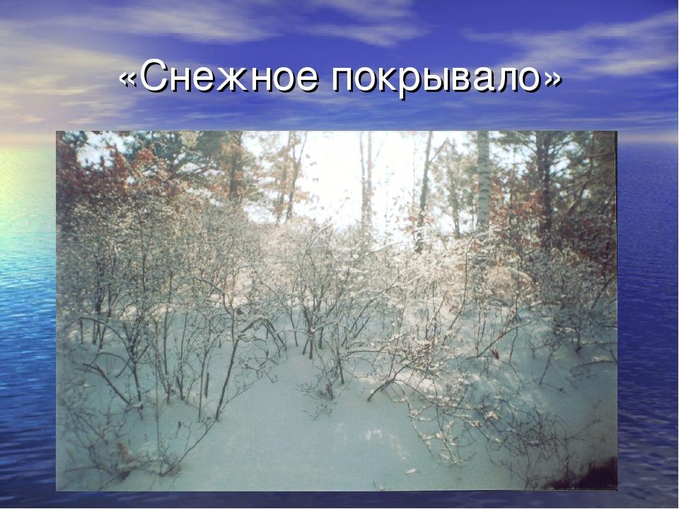 «Снежное покрывало»