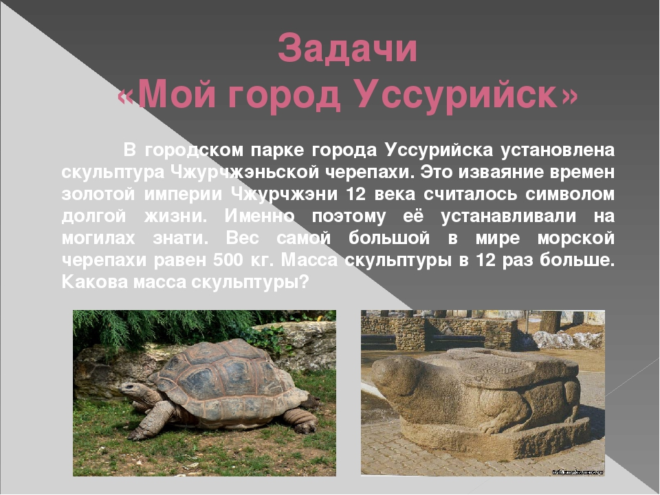 Задачи «Мой город Уссурийск» В городском парке города Уссурийска установлена...