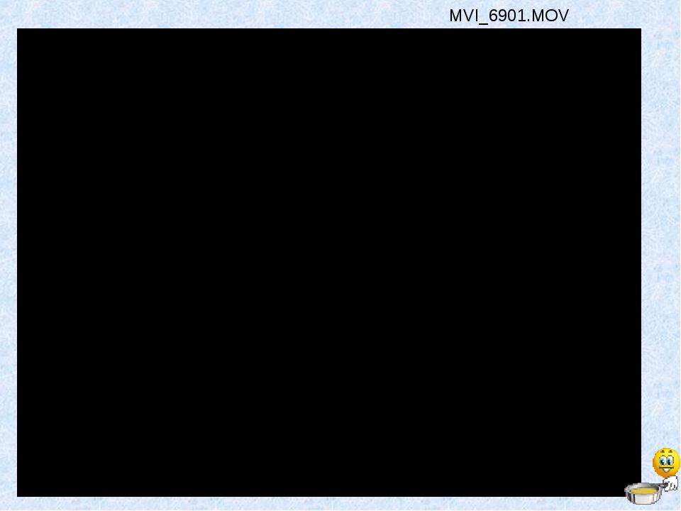 MVI_6901.MOV