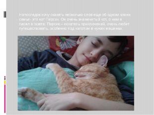 Напоследок хочу сказать несколько слов еще об одном члене семьи- это кот Пе