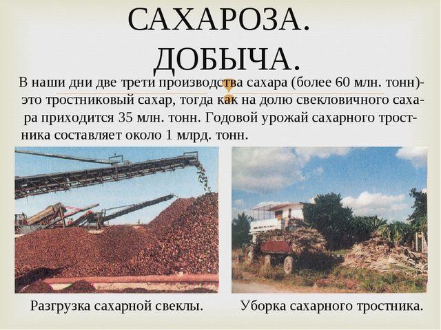 САХАРОЗА. ДОБЫЧА. В наши дни две трети производства сахара (более 60 млн. тон...