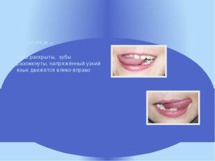 губы раскрыты, зубы разомкнуты, напряжённый узкий язык движется влево-вправо
