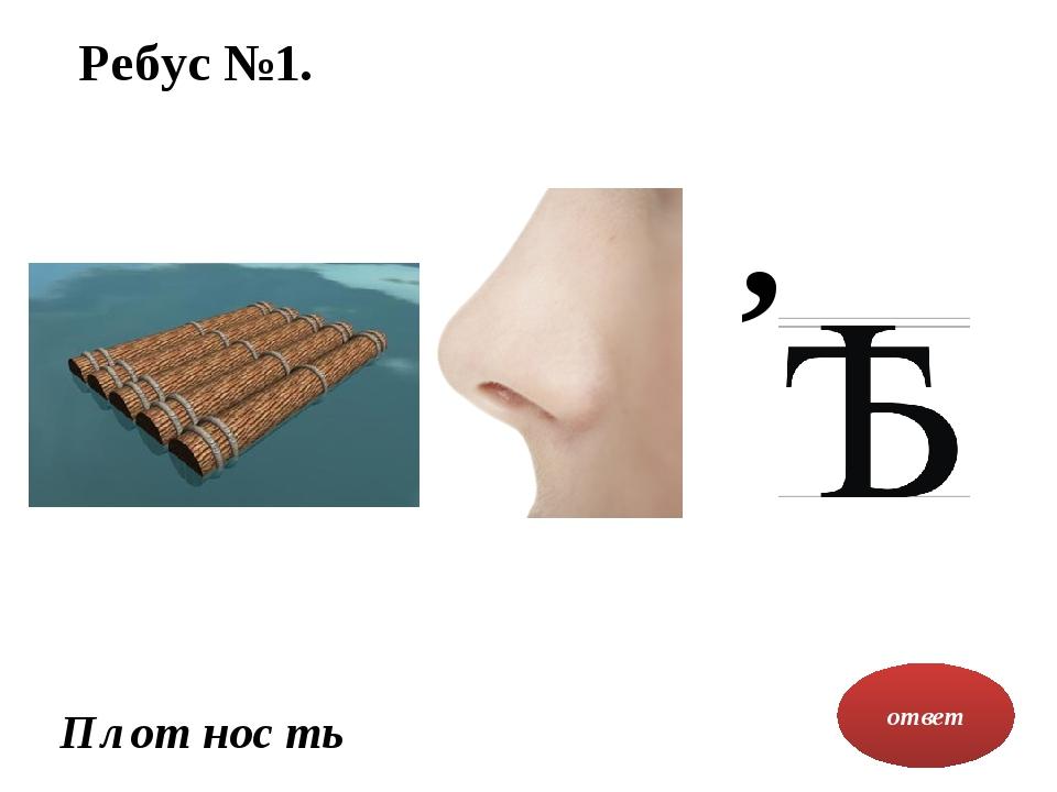 Ребус №1. ответ , Плот нос ть
