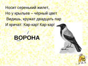 Носит серенький жилет, Но у крыльев – чёрный цвет Видишь, кружат двадцать пар
