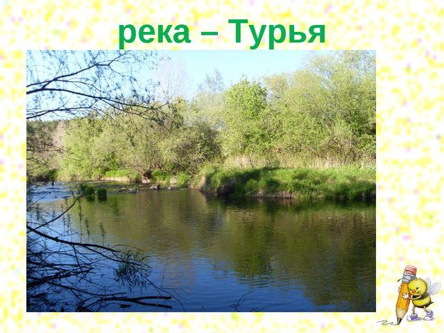 река – Турья
