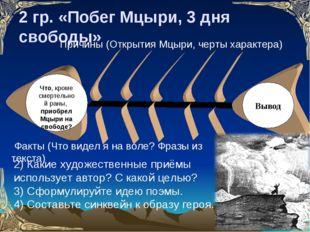 2 гр. «Побег Мцыри, 3 дня свободы» Что, кроме смертельной раны, приобрел Мцыр