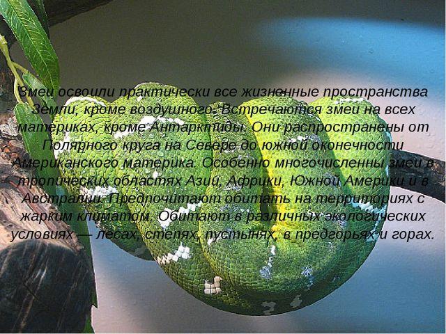 Змеи освоили практически все жизненные пространства Земли, кроме воздушного....