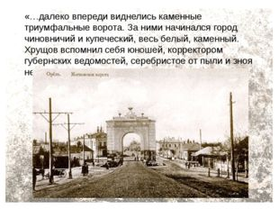 «…далеко впереди виднелись каменные триумфальные ворота. За ними начинался го
