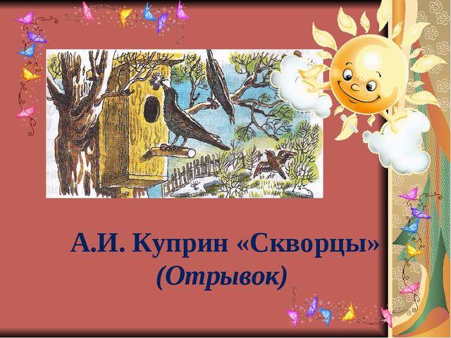 А.И. Куприн «Скворцы» (Отрывок)
