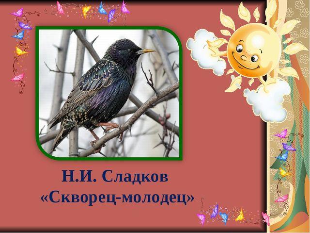Н.И. Сладков «Скворец-молодец»
