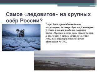 Самое «ледовитое» из крупных озёр России? Озеро Таймыр на одноимённом полуост