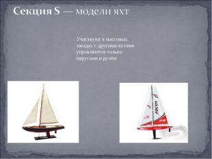 Участвуют в массовых заездах с другими яхтами управляются только парусами и р