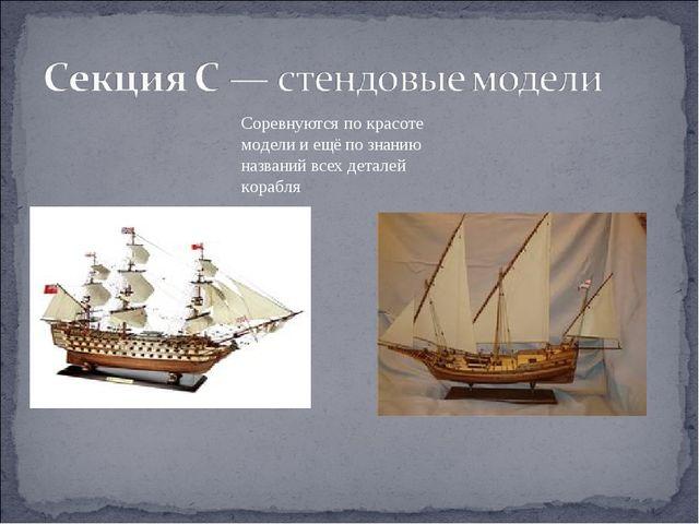 Соревнуются по красоте модели и ещё по знанию названий всех деталей корабля