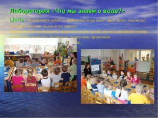Лаборатория «Что мы знаем о воде?» Цель: Познакомить детей со свойствами воды