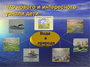 Вода в природе Что нового и интересного узнали дети