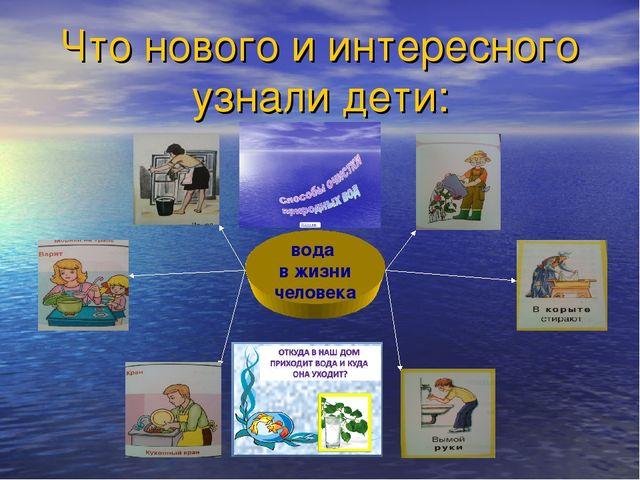 Что нового и интересного узнали дети: вода в жизни человека