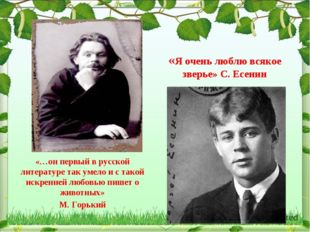 «…он первый в русской литературе так умело и с такой искренней любовью пишет