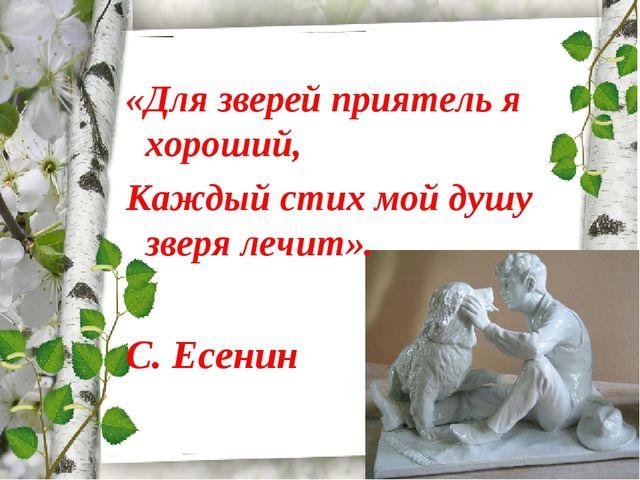 «Для зверей приятель я хороший, Каждый стих мой душу зверя лечит». С. Есенин