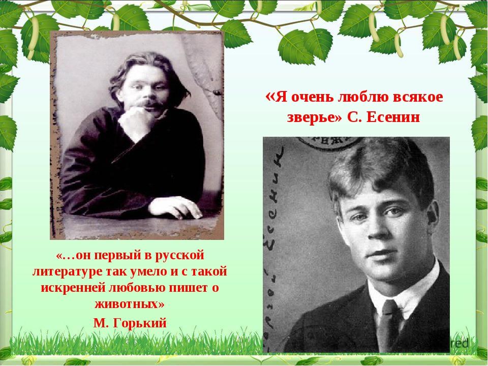 «…он первый в русской литературе так умело и с такой искренней любовью пишет...