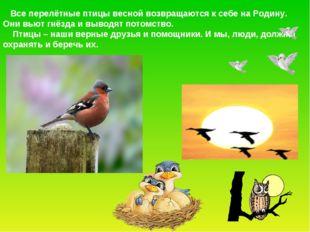 Все перелётные птицы весной возвращаются к себе на Родину. Они вьют гнёзда и