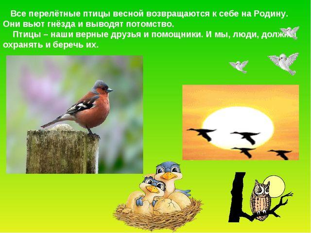 Все перелётные птицы весной возвращаются к себе на Родину. Они вьют гнёзда и...