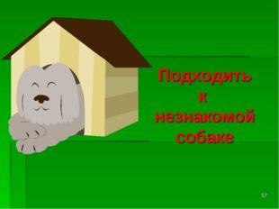 * Подходить к незнакомой собаке