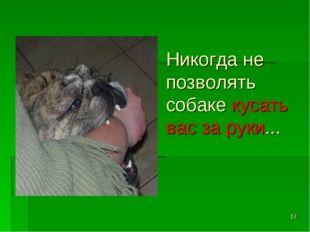 * Никогда не позволять собаке кусать вас за руки...