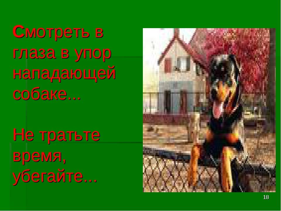 * Смотреть в глаза в упор нападающей собаке... Не тратьте время, убегайте...