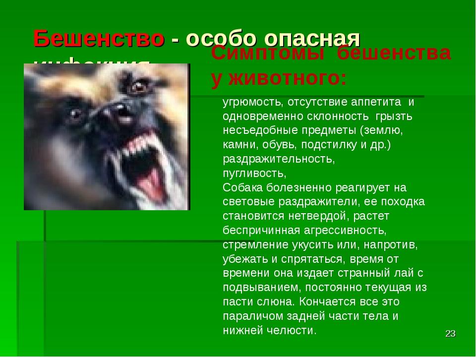 * Бешенство - особо опасная инфекция Симптомы бешенства у животного: угрюмост...