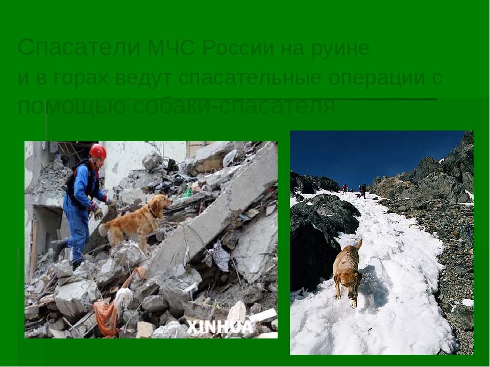 * Спасатели МЧС России на руине и в горах ведут спасательные операции с помощ...