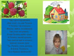 Там, где ягода-малина, Дом стоит, а в нем Полина. У Полины там игрушки, Мишки