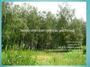 Экологические группы растений Работу выполнила Пименова К. Д. МОУ СОШ №48 кл