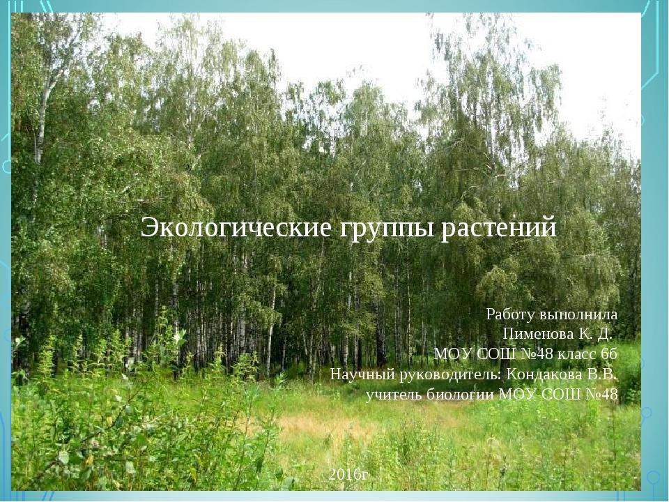 Экологические группы растений Работу выполнила Пименова К. Д. МОУ СОШ №48 кл...