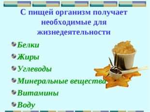 С пищей организм получает необходимые для жизнедеятельности Белки Жиры Углево