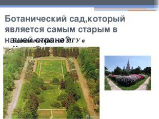 Ботанический сад,который является самым старым в нашей стране? Ботанический с