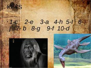 KEYS 1-c 2-e 3-a 4-h 5-I 6-j 7- b 8-g 9-f 10-d