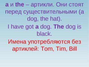 a и the – артикли. Они стоят перед существительными (a dog, the hat). I have