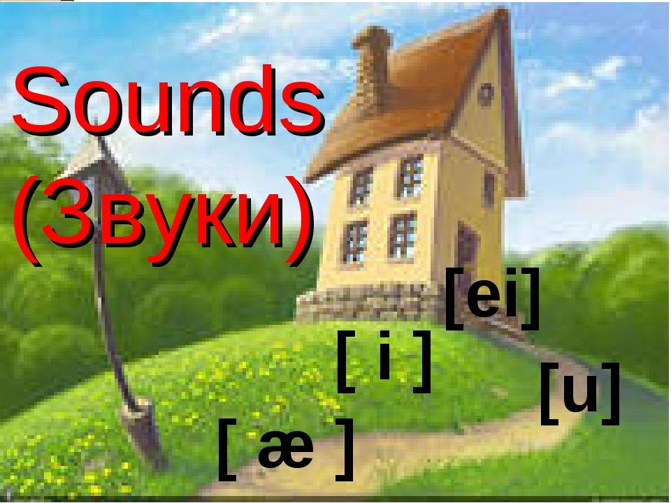 Sounds (Звуки) [u] [ei] [ i ] [ æ ]