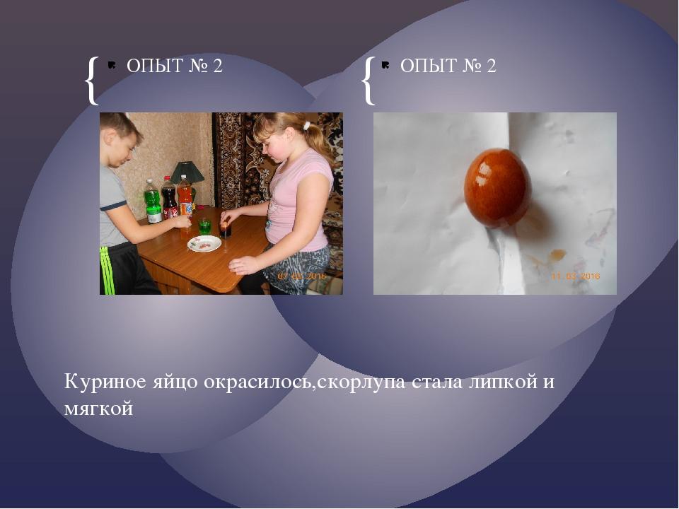 ОПЫТ № 2 ОПЫТ № 2 Куриное яйцо окрасилось,скорлупа стала липкой и мягкой { {