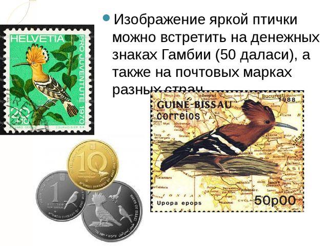 Изображение яркой птички можно встретить на денежных знаках Гамбии (50 даласи...