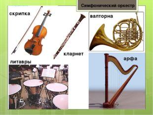 Симфонический оркестр скрипка литавры кларнет валторна арфа