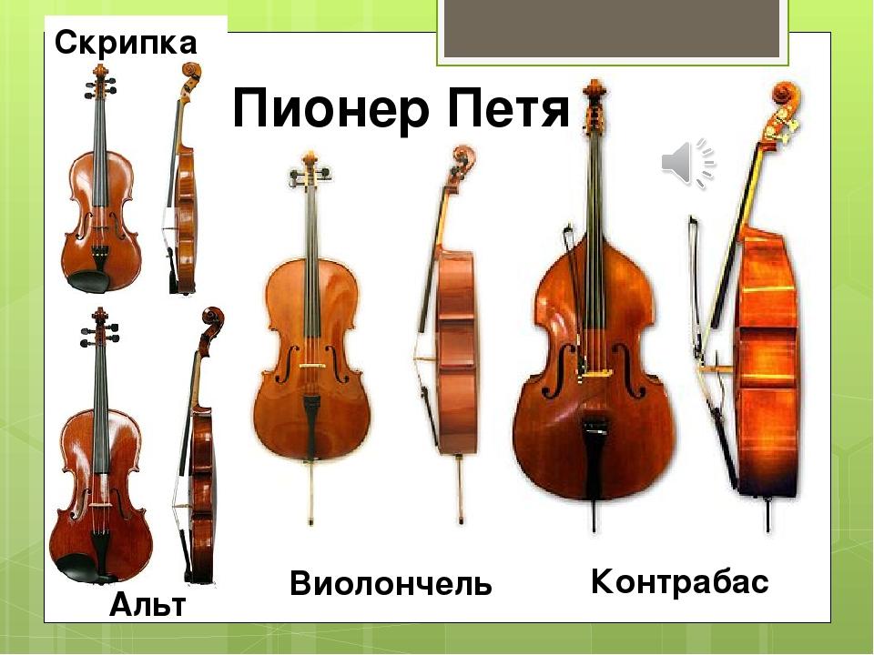 Скрипка Альт Виолончель Контрабас Пионер Петя