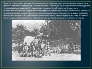 Крымские татары - народ, в котором к примитивно-жизнеспособному стволу монгол
