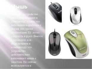 Мышь Мышь – устройство ввода информации в компьютер. Мышь это небольшая короб